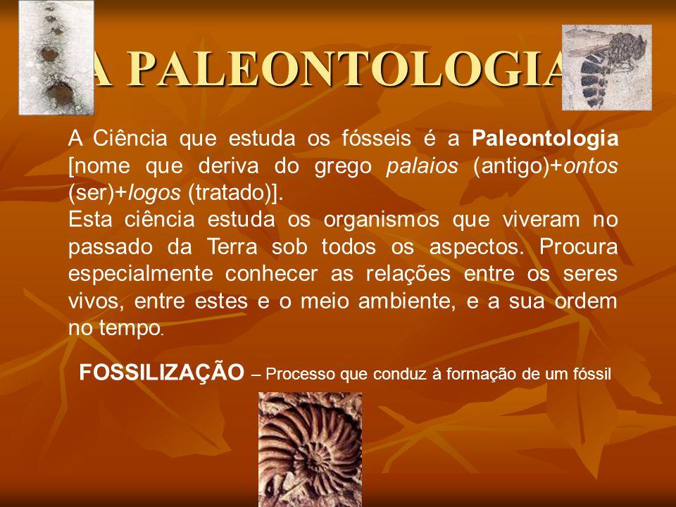 A PALEONTOLOGIA A Ciência que estuda os fósseis é a Paleontologia [nome que deriva do grego palaios (antigo)+ontos (ser)+logos (tratado)].